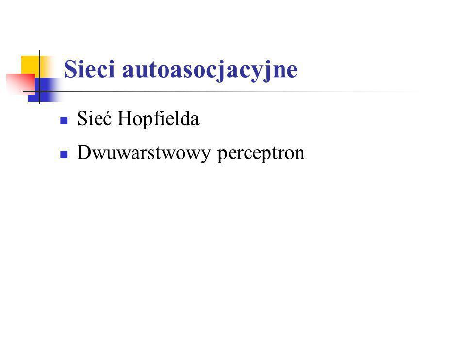 Sieci autoasocjacyjne Sieć Hopfielda Dwuwarstwowy perceptron
