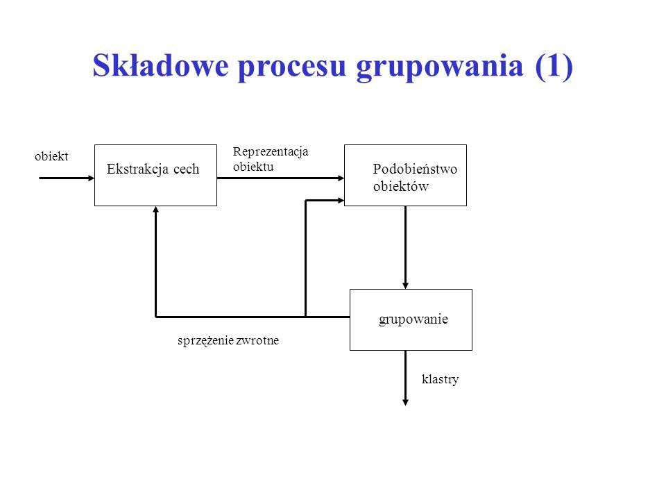 Składowe procesu grupowania (1) Ekstrakcja cechPodobieństwo obiektów Reprezentacja obiektu obiekt grupowanie klastry sprzężenie zwrotne