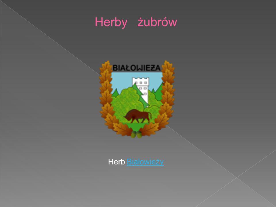 Herb BiałowieżyBiałowieży Herby żubrów