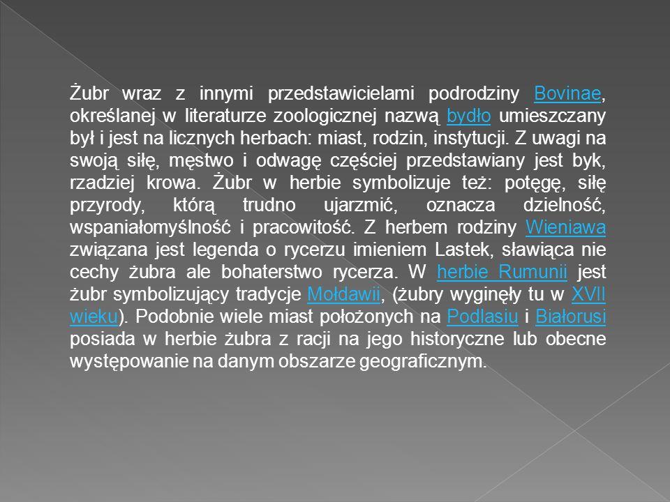 Żubr wraz z innymi przedstawicielami podrodziny Bovinae, określanej w literaturze zoologicznej nazwą bydło umieszczany był i jest na licznych herbach: