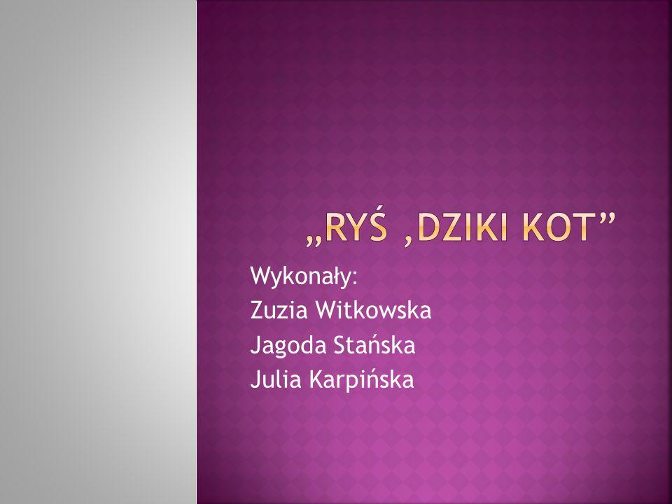 Wykona ły: Zuzia Witkowska Jagoda Stańska Julia Karpińska