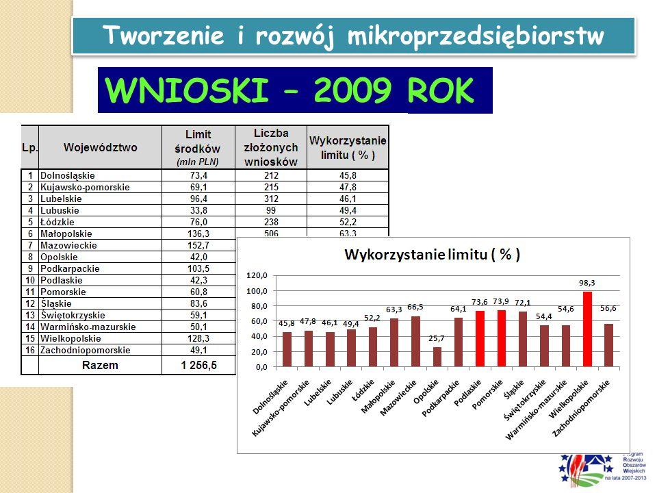 Tworzenie i rozwój mikroprzedsiębiorstw WNIOSKI – 2009 ROK