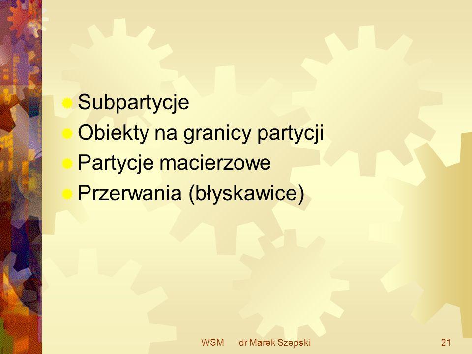 WSM dr Marek Szepski21 Subpartycje Obiekty na granicy partycji Partycje macierzowe Przerwania (błyskawice)