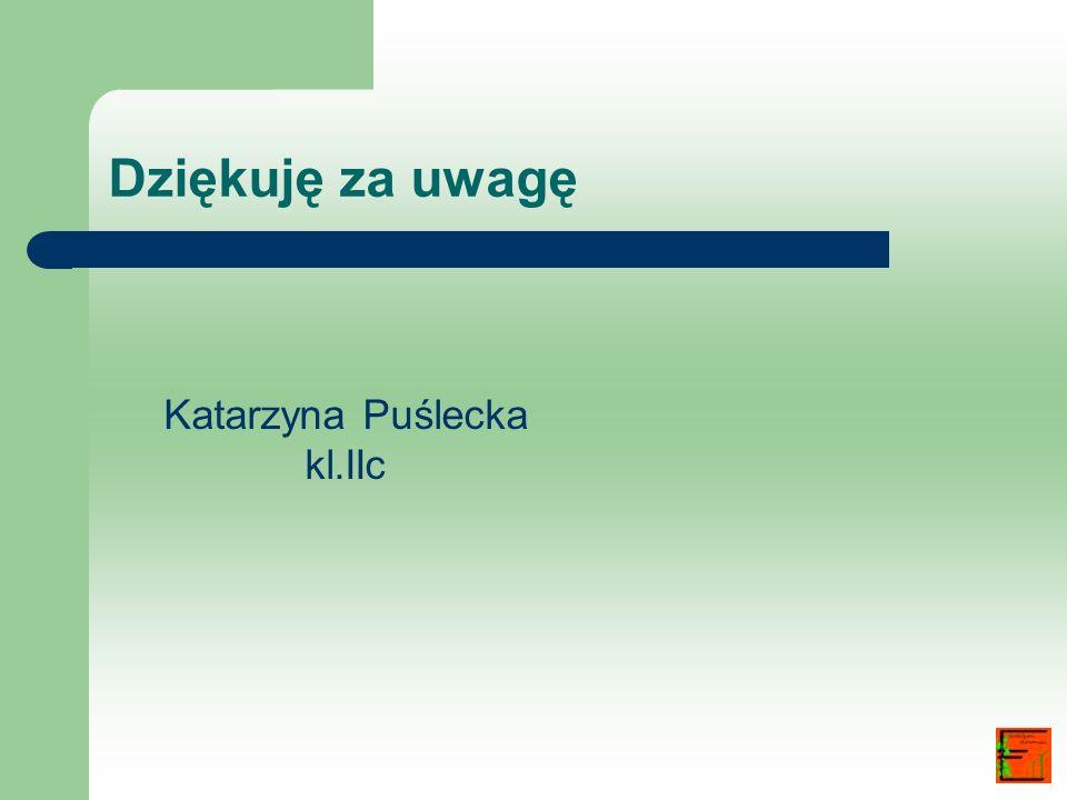 Dziękuję za uwagę Katarzyna Puślecka kl.IIc