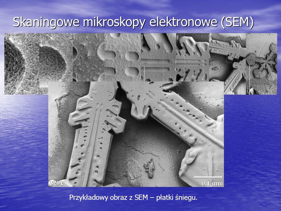 Skaningowe mikroskopy elektronowe (SEM) Przykładowy obraz z SEM – płatki śniegu.