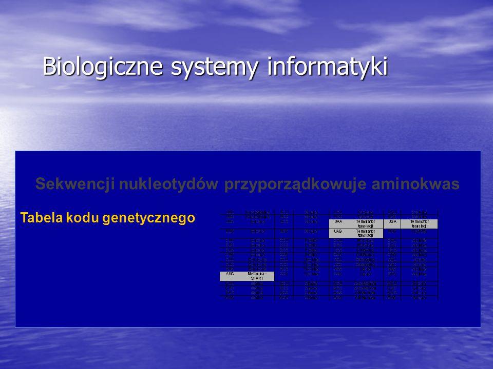 Sekwencji nukleotydów przyporządkowuje aminokwas Tabela kodu genetycznego Biologiczne systemy informatyki