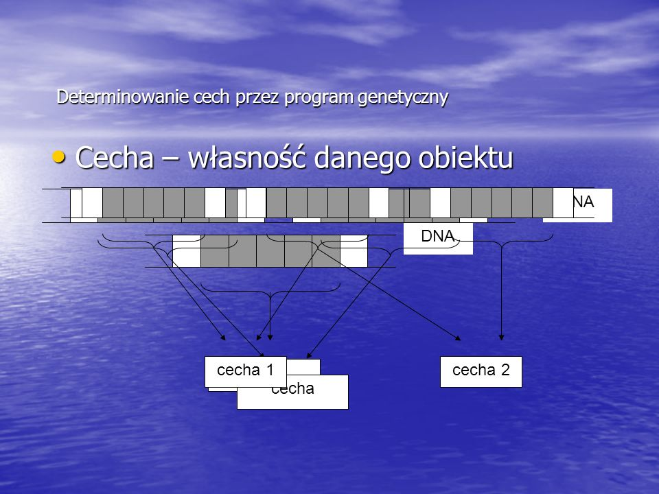 Determinowanie cech przez program genetyczny Cecha – własność danego obiektu Cecha – własność danego obiektu cecha DNA cecha DNA cecha 1cecha 2