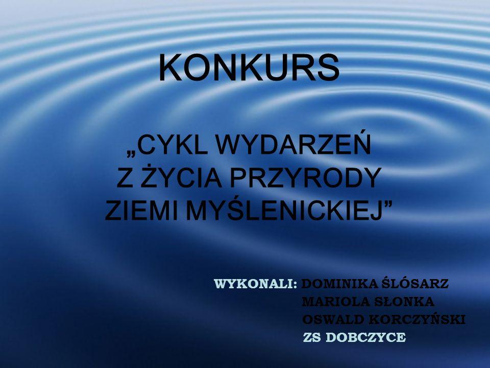 Fot. Oswald Korczyński