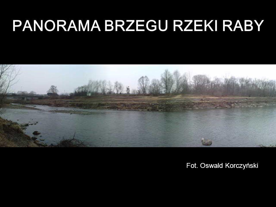 PANORAMA BRZEGU RZEKI RABY Fot. Oswald Korczyński