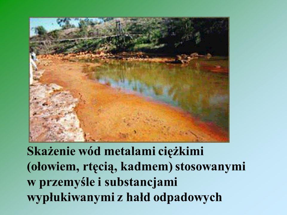Skażenie wód metalami ciężkimi (ołowiem, rtęcią, kadmem) stosowanymi w przemyśle i substancjami wypłukiwanymi z hałd odpadowych