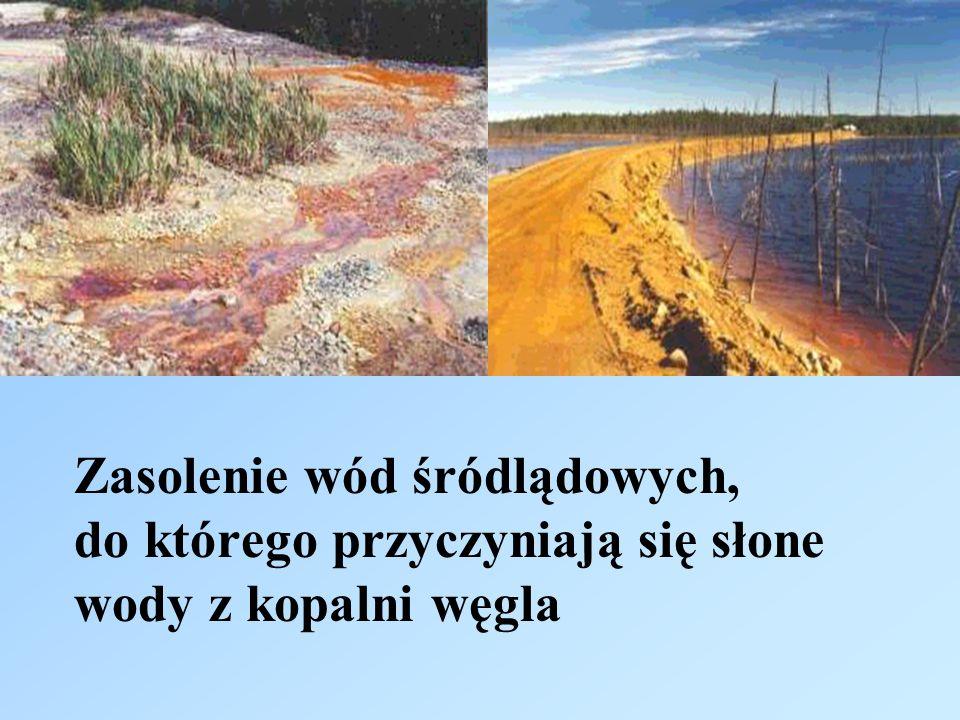 Zasolenie wód śródlądowych, do którego przyczyniają się słone wody z kopalni węgla