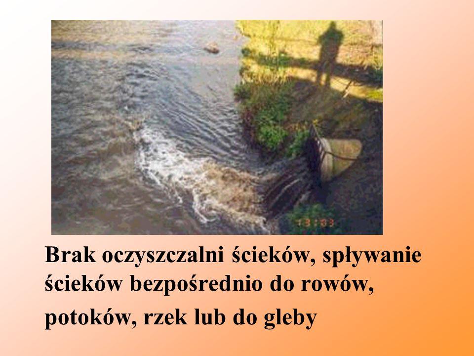 Brak oczyszczalni ścieków, spływanie ścieków bezpośrednio do rowów, potoków, rzek lub do gleby