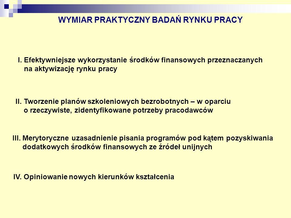 WYMIAR PRAKTYCZNY BADAŃ RYNKU PRACY VI.