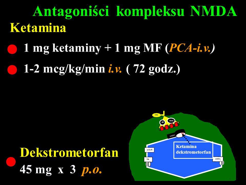 DRG A C SP EAA NMDA mGluR AMPA NK MgSO 4 20 ml (0.5 mol.) i.v.