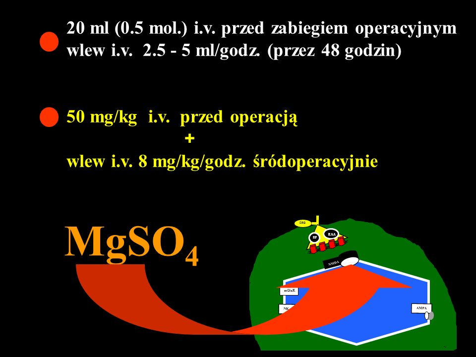 DRG A C SP EAA NMDA mGluR AMPA NK MgSO 4 20 ml (0.5 mol.) i.v. przed zabiegiem operacyjnym wlew i.v. 2.5 - 5 ml/godz. (przez 48 godzin) 50 mg/kg i.v.