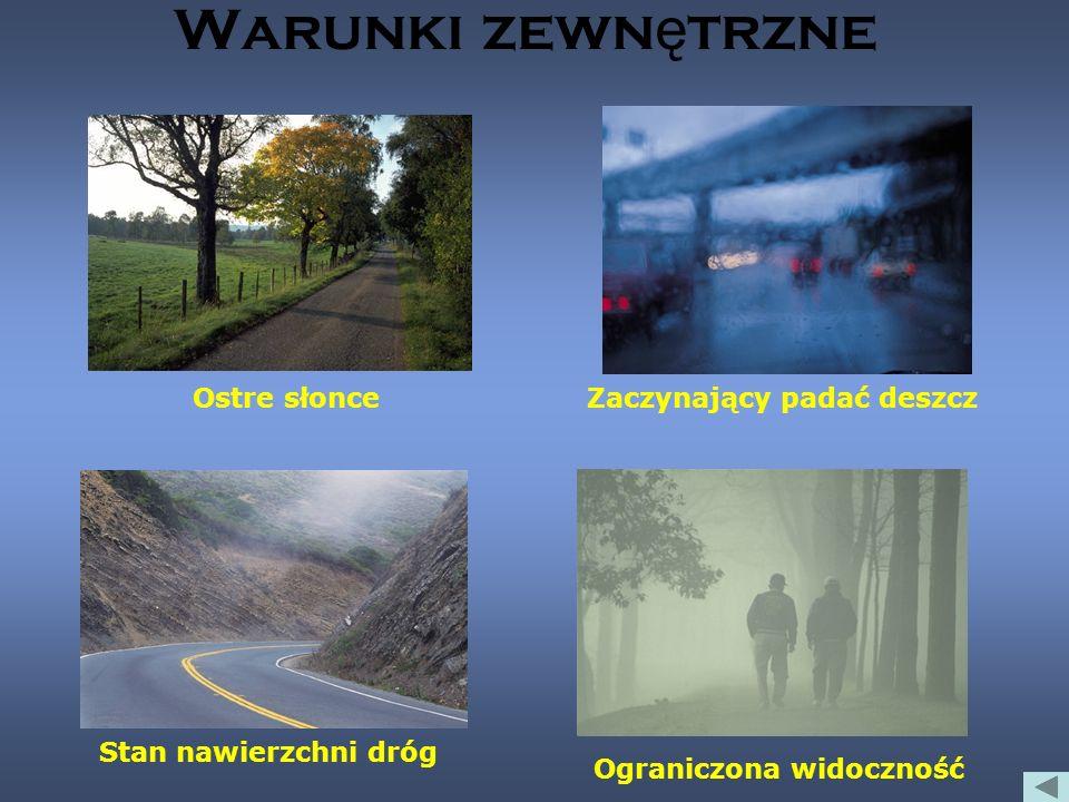 Warunki zewn ę trzne Ostre słonceZaczynający padać deszcz Stan nawierzchni dróg Ograniczona widoczność