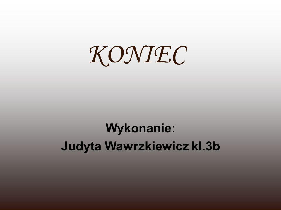 KONIEC Wykonanie: Judyta Wawrzkiewicz kl.3b