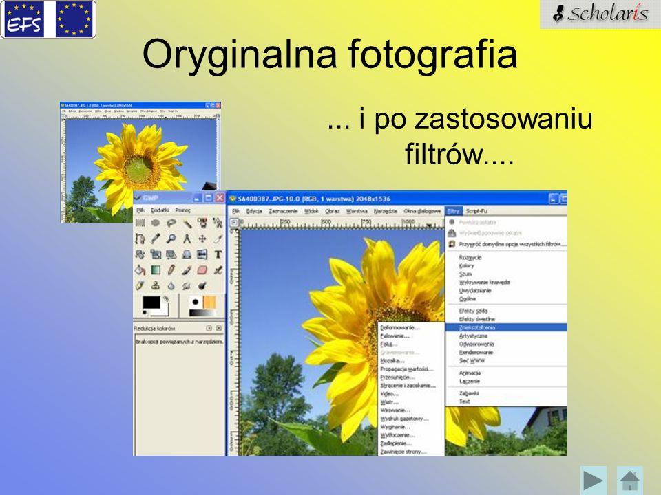 Oryginalna fotografia... i po zastosowaniu filtrów....