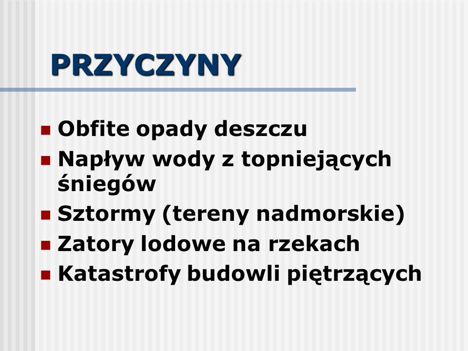 SPRZĘT 1.Pływający Łodzie wiosłowe Łodzie motorowe 2.