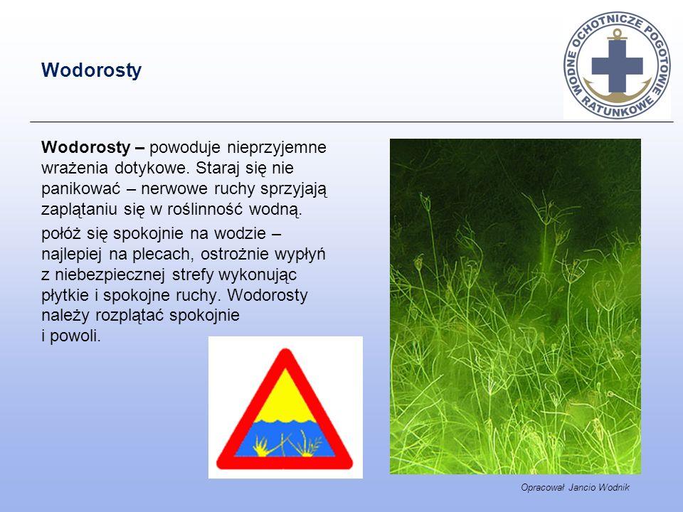 Wodorosty Wodorosty – powoduje nieprzyjemne wrażenia dotykowe. Staraj się nie panikować – nerwowe ruchy sprzyjają zaplątaniu się w roślinność wodną. p