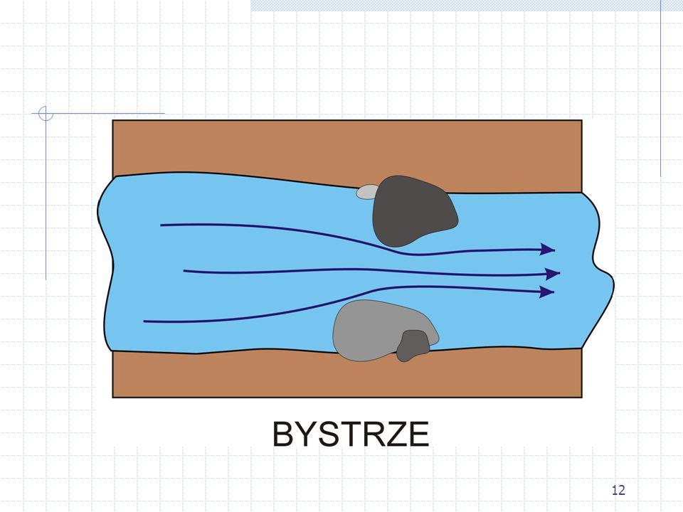 13 Cofka Miejsce gdzie woda znacznie zwalnia lub płynie pod prąd.