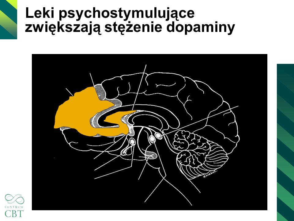 Leki psychostymulujące zwiększają stężenie dopaminy