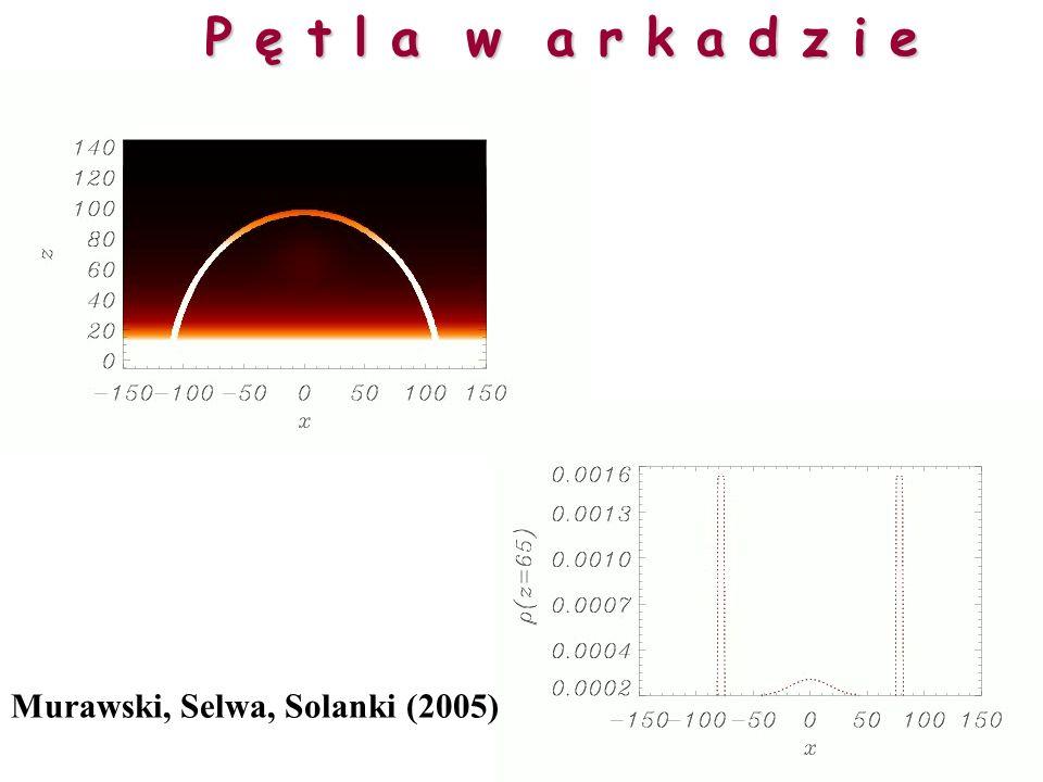 Selwa, Murawski (2004) Stojące fale powolne w zamkniętej pętli
