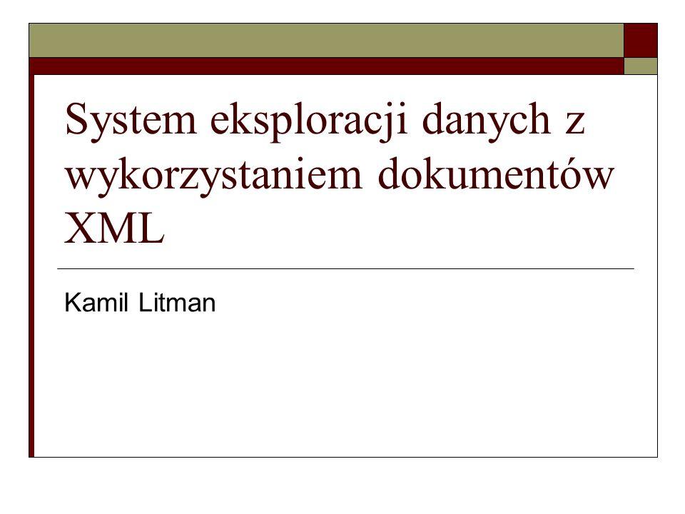 System eksploracji danych z wykorzystaniem dokumentów XML Kamil Litman