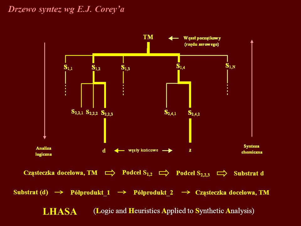 Drzewo syntez wg E.J. Coreya LHASA (Logic and Heuristics Applied to Synthetic Analysis) Substrat (d ) Półprodukt_1Półprodukt_2 Cząsteczka docelowa, TM