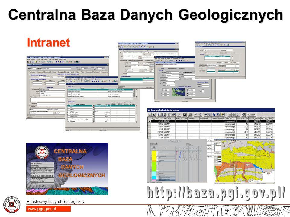 Państwowy Instytut Geologiczny www.pgi.gov.pl Centralna Baza Danych Geologicznych Intranet