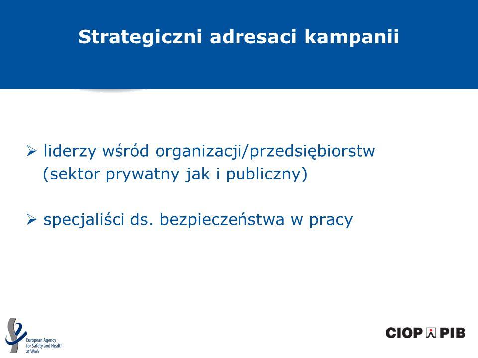 Strategiczni adresaci kampanii liderzy wśród organizacji/przedsiębiorstw (sektor prywatny jak i publiczny) specjaliści ds. bezpieczeństwa w pracy