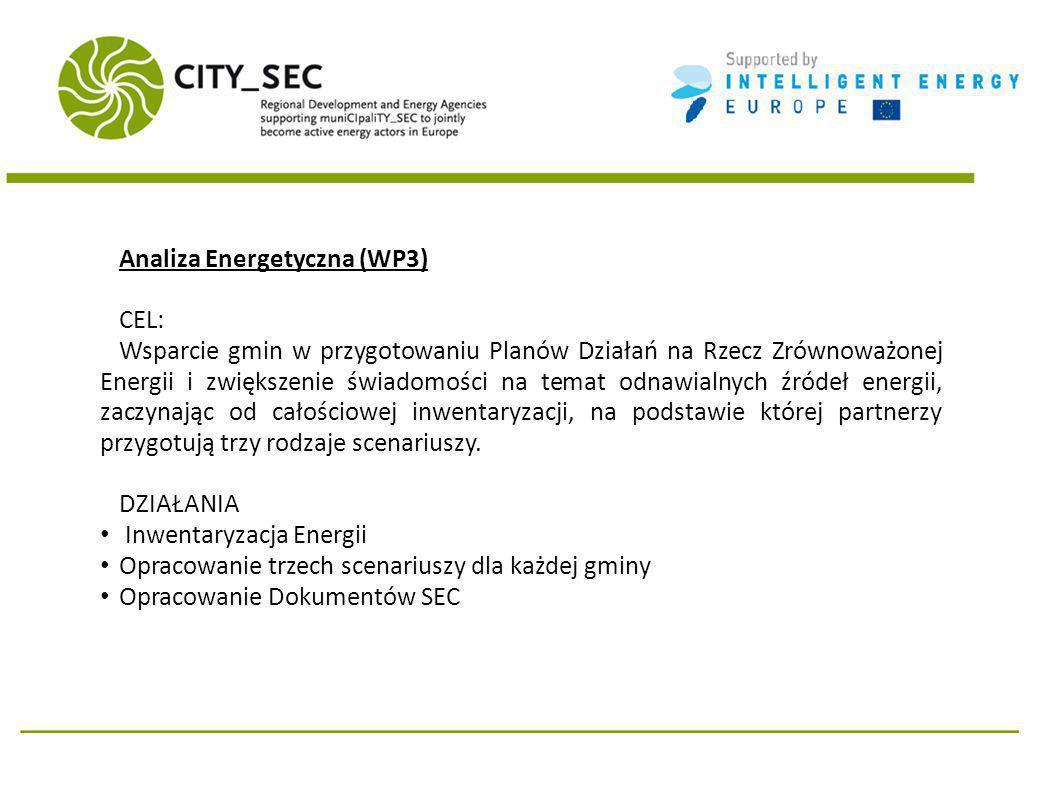 Analiza Energetyczna (WP3) CEL: Wsparcie gmin w przygotowaniu Planów Działań na Rzecz Zrównoważonej Energii i zwiększenie świadomości na temat odnawialnych źródeł energii, zaczynając od całościowej inwentaryzacji, na podstawie której partnerzy przygotują trzy rodzaje scenariuszy.