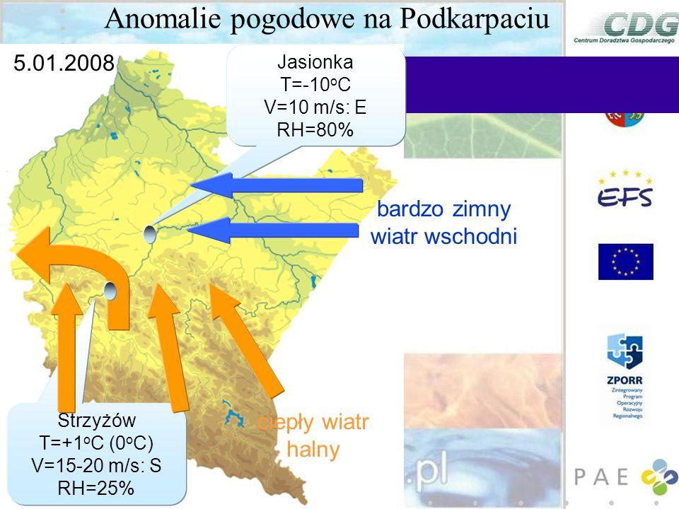 Anomalie pogodowe na Podkarpaciu ciepły wiatr halny bardzo zimny wiatr wschodni 5.01.2008 Strzyżów T=+1 o C (0 o C) V=15-20 m/s: S RH=25% Jasionka T=-