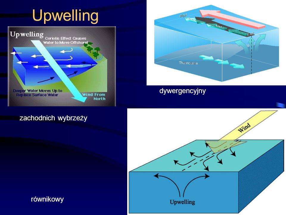 45 Upwelling dywergencyjny zachodnich wybrzeży równikowy