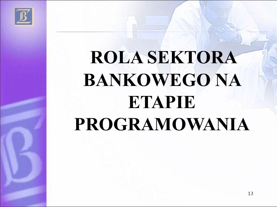 13 ROLA SEKTORA BANKOWEGO NA ETAPIE PROGRAMOWANIA