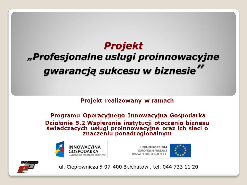 Projekt Profesjonalne usługi proinnowacyjne gwarancją sukcesu w biznesie Projekt Profesjonalne usługi proinnowacyjne gwarancją sukcesu w biznesie Proj
