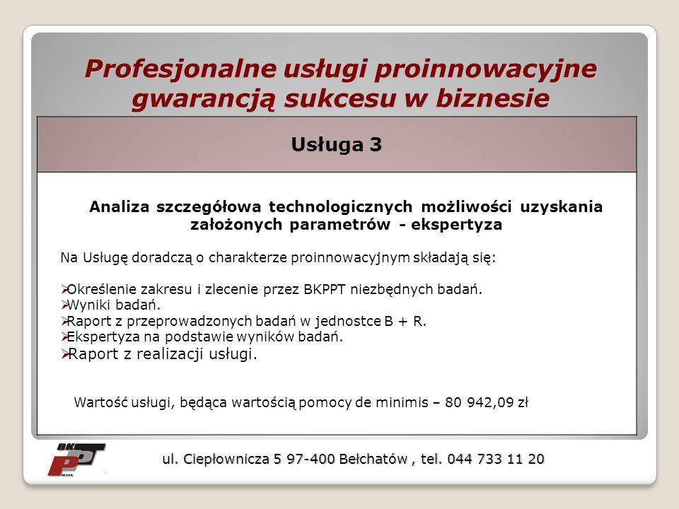 Profesjonalne usługi proinnowacyjne gwarancją sukcesu w biznesie ul. Ciepłownicza 5 97-400 Bełchatów, tel. 044 733 11 20 Usługa 3 Analiza szczegółowa