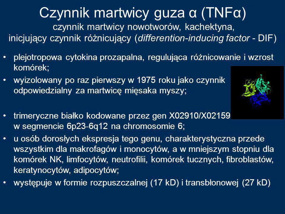 Czynnik martwicy guza α (TNFα) czynnik martwicy nowotworów, kachektyna, inicjujący czynnik różnicujący (differention-inducing factor - DIF) plejotropo