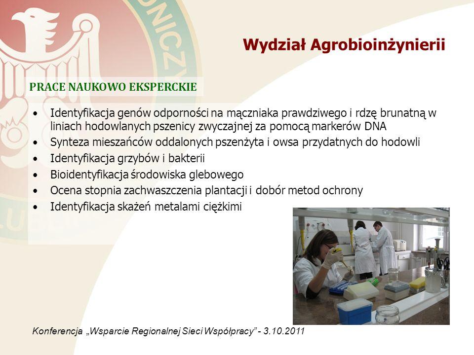 Wydział Agrobioinżynierii Identyfikacja genów odporności na mączniaka prawdziwego i rdzę brunatną w liniach hodowlanych pszenicy zwyczajnej za pomocą