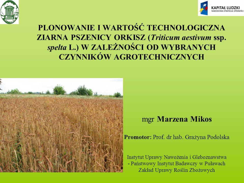 PRAKTYCZNE WYKORZYSTANIE WYNIKÓW Wyniki badań pracy doktorskiej: dadzą podstawę do opracowania technologii produkcji polskich odmian pszenicy orkisz umożliwiającej otrzymanie surowca o korzystnych parametrach przemiałowych ziarna i wypiekowych mąki mają charakter poznawczy, aplikacyjny oraz będą przydatne do wydania zaleceń agrotechnicznych dla rolników dadzą podstawę do wprowadzenia do uprawy nowych polskich odmian pszenicy orkiszowej i promowania pieczywa z orkiszu jako żywności funkcjonalnej