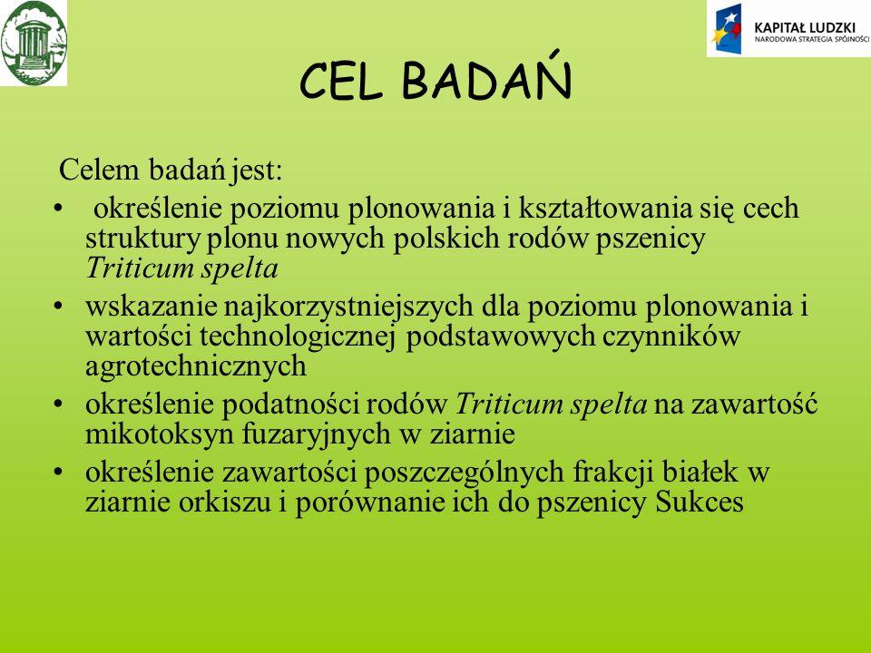 CEL BADAŃ Celem badań jest: określenie poziomu plonowania i kształtowania się cech struktury plonu nowych polskich rodów pszenicy Triticum spelta wska