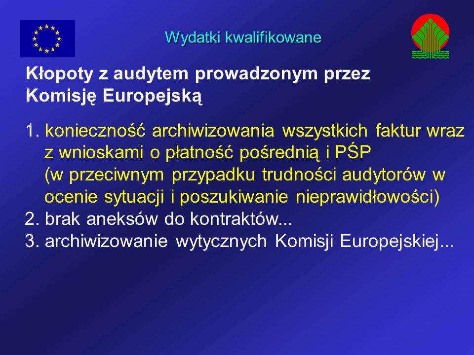Wydatki kwalifikowane Kłopoty z audytem prowadzonym przez Komisję Europejską 1. konieczność archiwizowania wszystkich faktur wraz z wnioskami o płatno