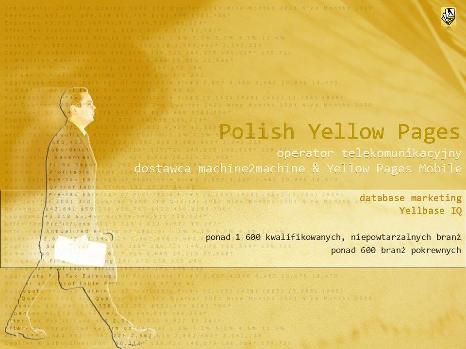 Polish Yellow Pages Oferta Wykupienie Licencji na udostępnienie i przetwarzanie rekordów z Bazy Danych Księga Handlu Usług i Instytucji RP Oferta Wykupienie Licencji na udostępnienie i przetwarzanie rekordów z Bazy Danych Księga Handlu Usług i Instytucji RP Promocja do 15 grudnia 2009