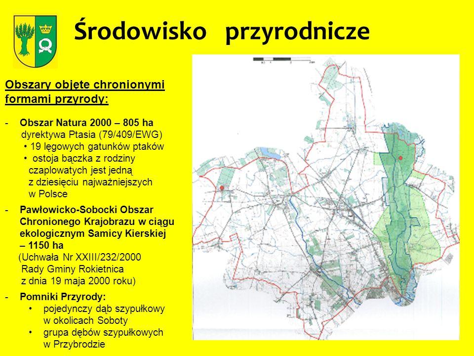Środowisko przyrodnicze Obszary objęte chronionymi formami przyrody: -Obszar Natura 2000 – 805 ha dyrektywa Ptasia (79/409/EWG) 19 lęgowych gatunków p