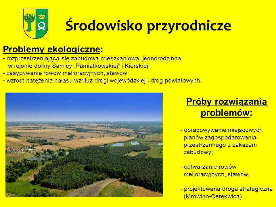 Problemy ekologiczne: - rozprzestrzeniająca się zabudowa mieszkaniowa jednorodzinna w rejonie doliny Samicy Pamiątkowskiej i Kierskiej; - zasypywanie