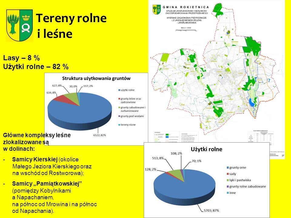 Tereny rolne i leśne Lasy – 8 % Użytki rolne – 82 % Główne kompleksy leśne zlokalizowane są w dolinach: -Samicy Kierskiej (okolice Małego Jeziora Kier