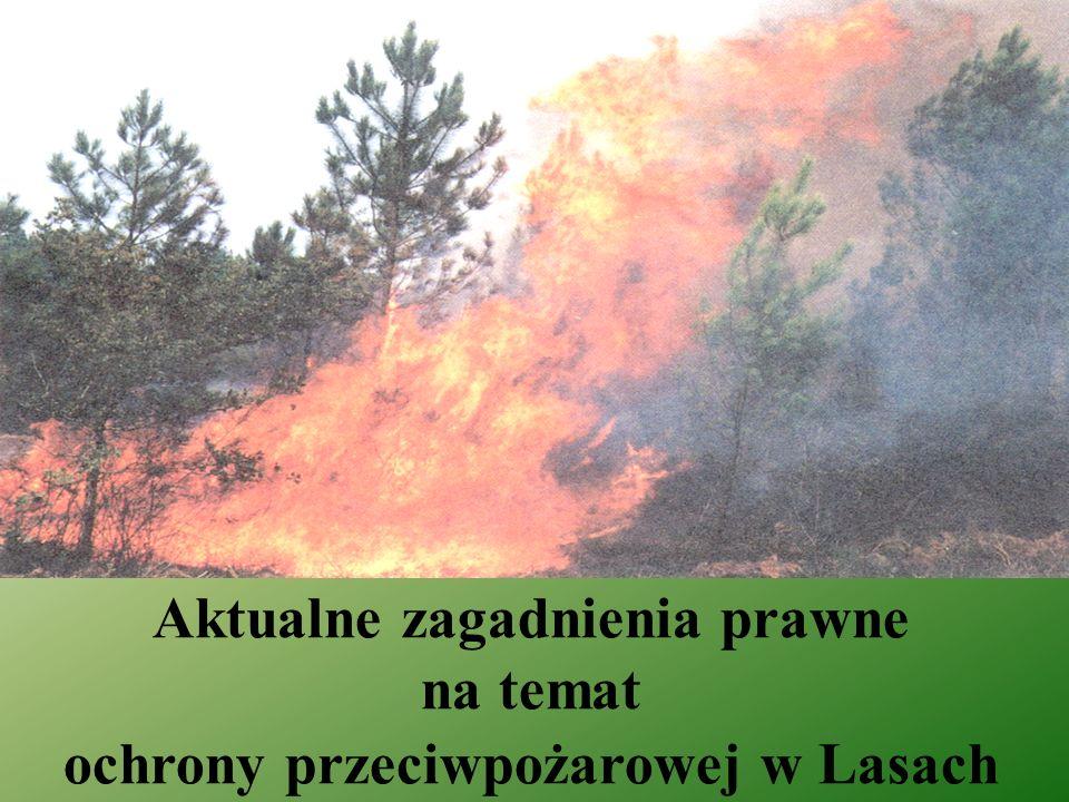 Sposób zaliczania lasów do kategorii zagrożenia pożarowego lasów Obowiązujący Kategoria zagrożenia pożarowego lasów obejmuje lasy o podobnym poziomie podatności na pożar, ustalonym na 10 lat na podstawie liczby pożarów, warunków drzewostanowych i klimatycznych oraz czynników antropogenicznych.