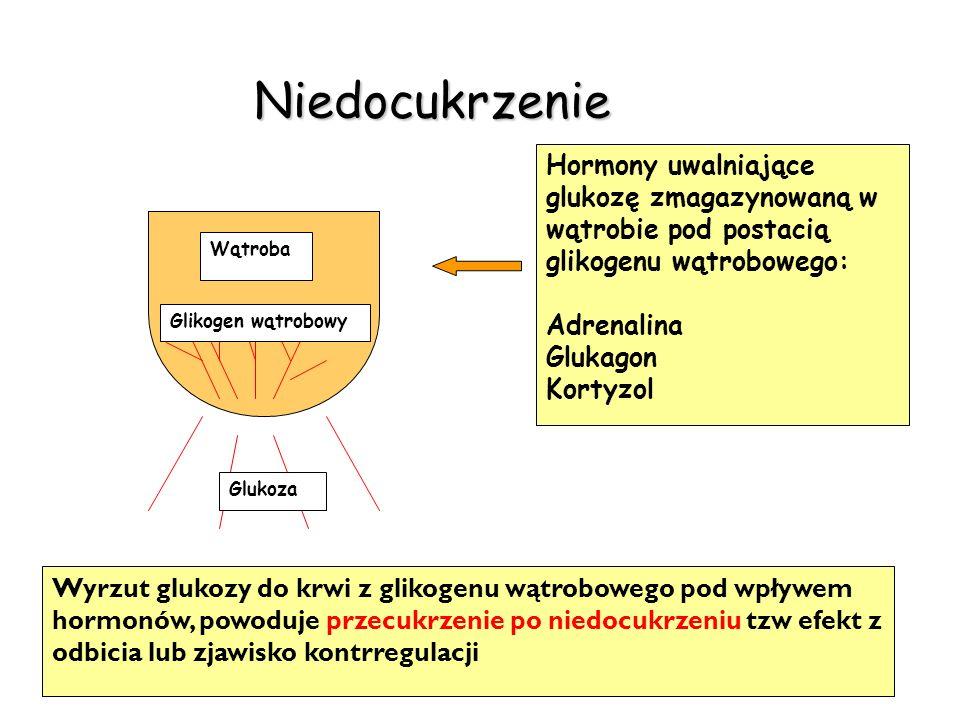 Niedocukrzenie Wyrzut glukozy do krwi z glikogenu wątrobowego pod wpływem hormonów, powoduje przecukrzenie po niedocukrzeniu tzw efekt z odbicia lub z