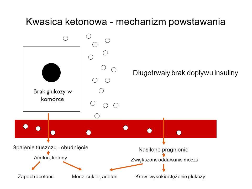 Spalanie tłuszczu - chudnięcie Nasilone pragnienie Brak glukozy w komórce Kwasica ketonowa - mechanizm powstawania Aceton, ketony Zwiększone oddawanie