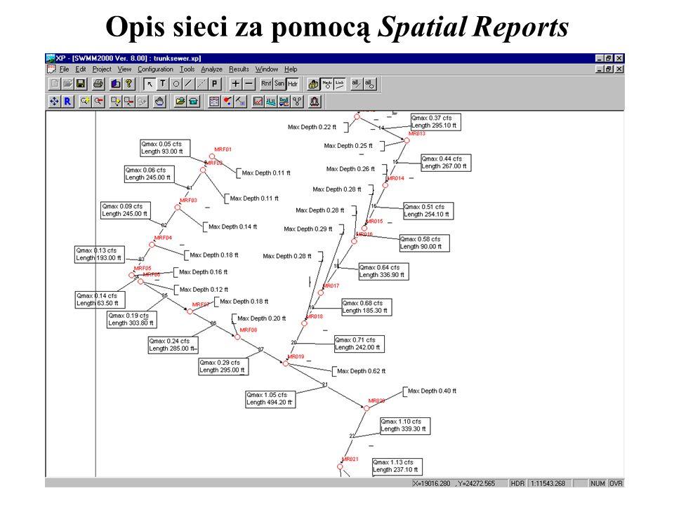 Opis sieci za pomocą Spatial Reports